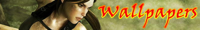 banners-secoes-38